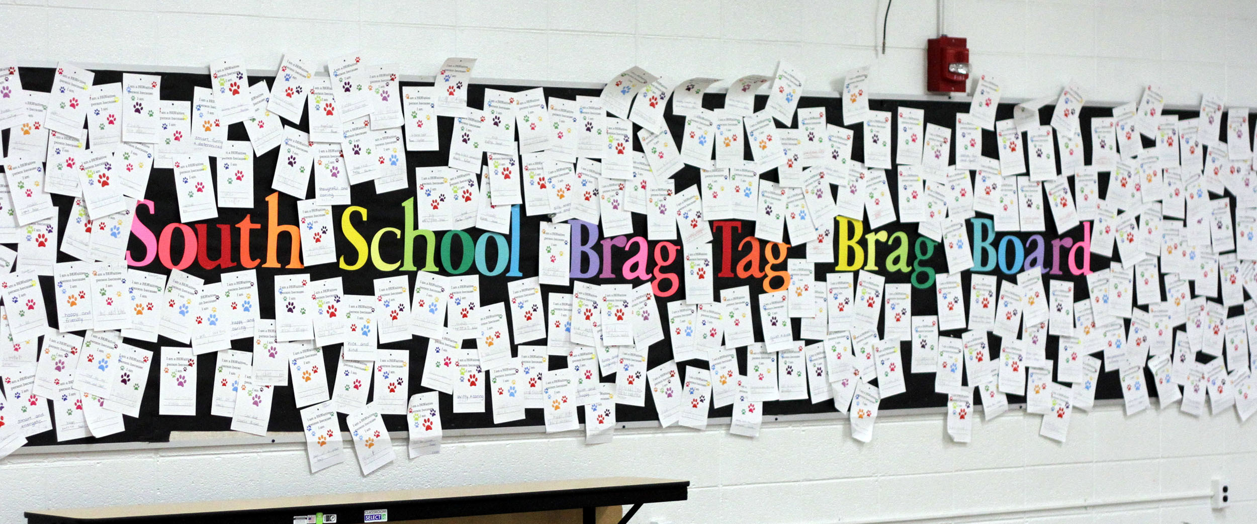 South School Brag Tags